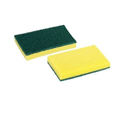 Lapa PLA Sponge Fibre, Green, Multi-Colour, One Size: Kitchen & Dining