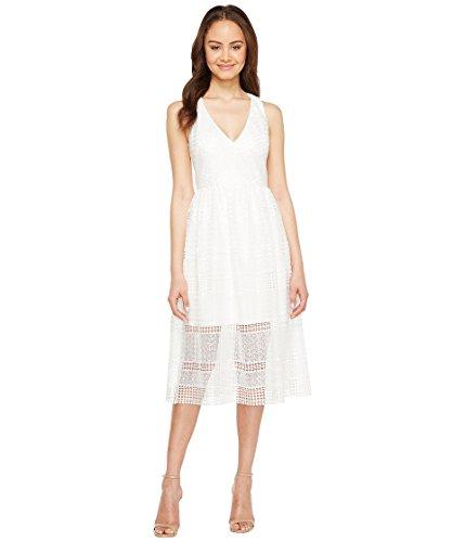 暴徒運命的な複数[アドリアナパペル] Adrianna Papell レディース Lace Tea Length A-Line Dress ドレス [並行輸入品]
