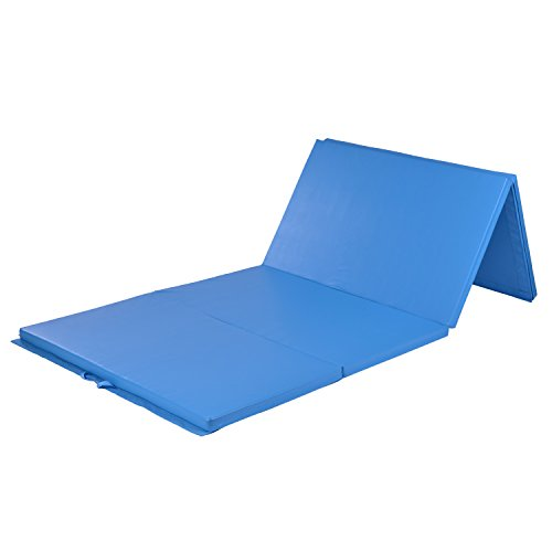 Folding Gymnastics Mat (10 feet). CPSIA approved