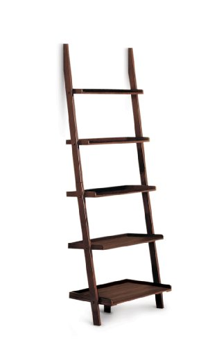 Review Poundex 5-Tier Leaning Wall Shelf, Cappuccino By Poundex by Poundex