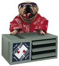 - Modine HD45AS0121 Propane LP Gas Hot Dawg Garage Heater 45,000 BTU with 80-Percent Efficiency