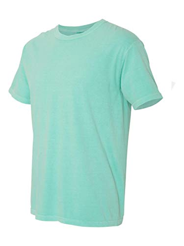 Comfort Colors Men's Adult Short Sleeve Tee, Style 1717, Chalky Mint, Small