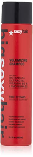 (SEXYHAIR Big Volumizing Shampoo, 10.1 Fl Oz)