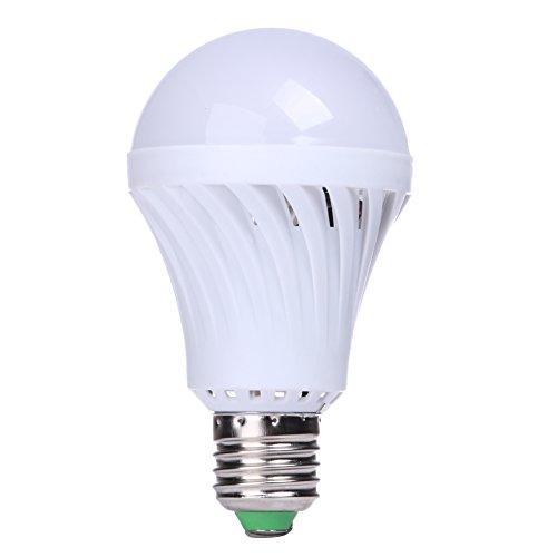 220 Volt Outdoor Lighting in Florida - 9