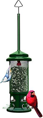 Most Popular Bird Feeders
