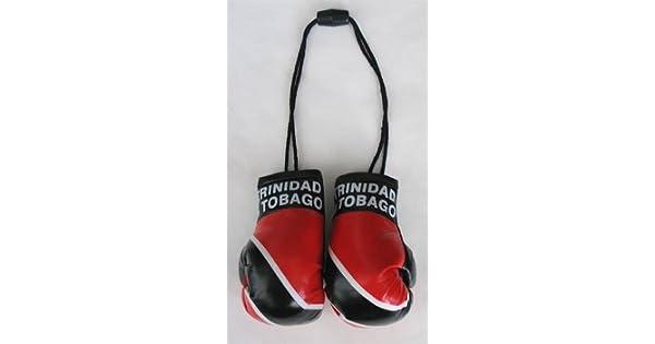 Amazon.com: Trinidad & Tobago – Mini guantes de boxeo: Toys ...