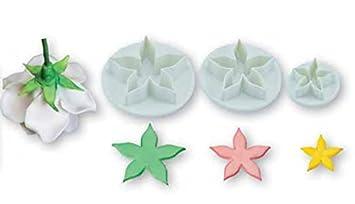 Juego 3 moldes cortadores flores punta estrella