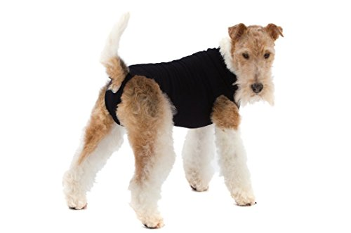 Suitical Recovery Suit for Dogs - Black - size (Dog Suits)