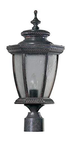 One Light Baltic Granite Clear Glass Post Light