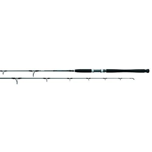 - Daiwa STJ66MHFS Saltist Jigging Spinning Rod, 6'6