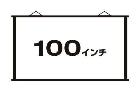 ペーパースクリーン 100インチワイド(16:9) PSW-100F [プロジェクタースクリーン] B00BQT867I
