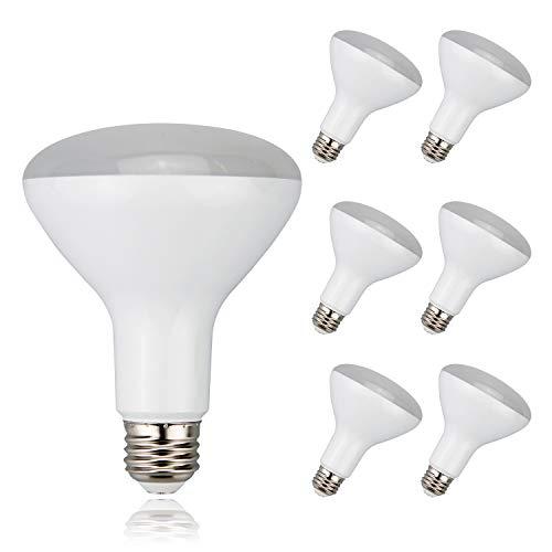 Flood Light Bulb 65W 120V