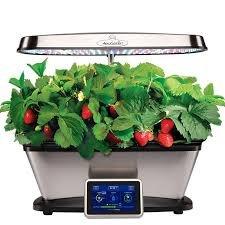 Aerogarden Bounty Elite Wi-Fi Stainless Steel Indoor Garden with Cherry Tomato Kit by AeroGrow (Image #4)