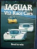 Jaguar V12 Racing Car, Ian Bamsey, 0850456800