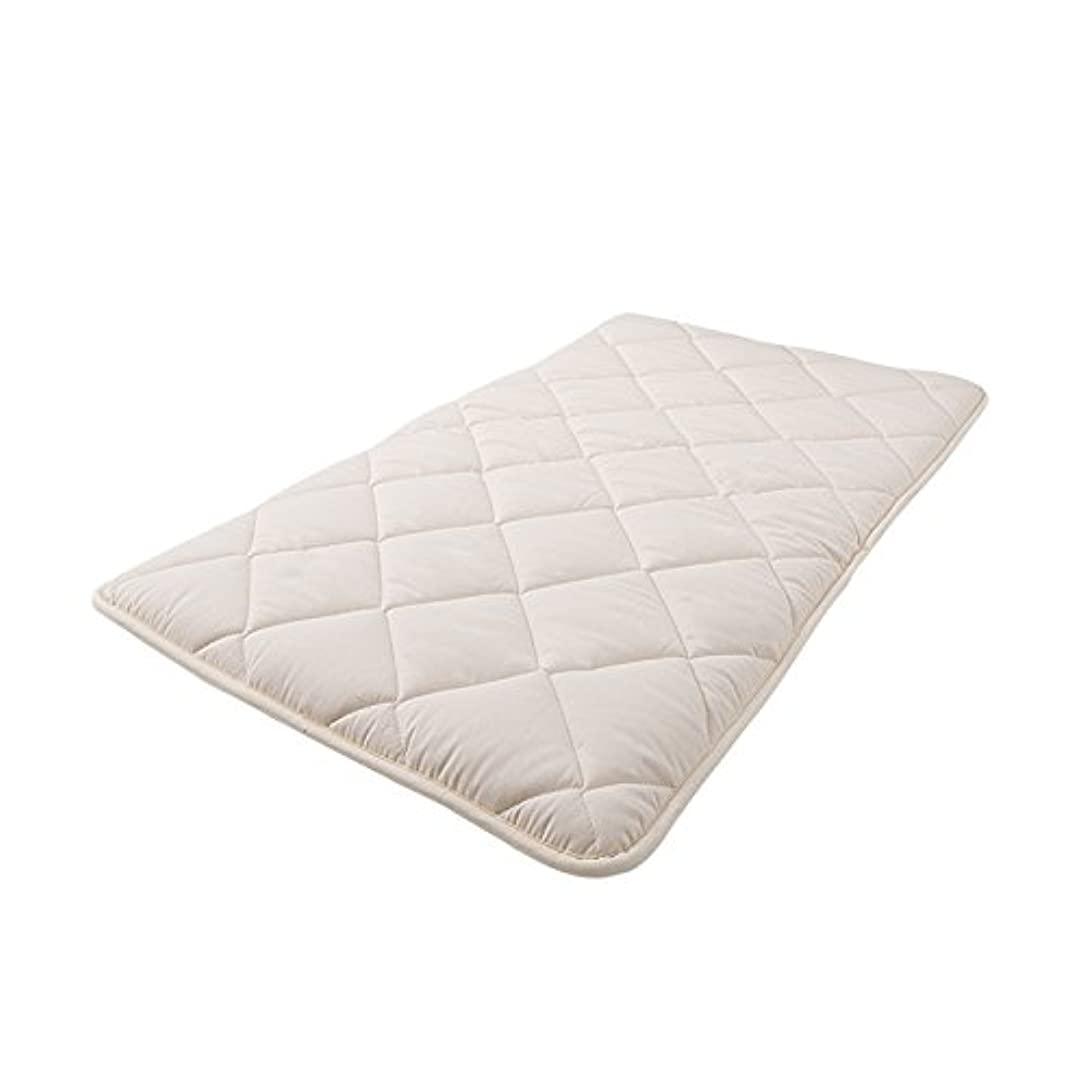 高原リビングルーム収まるアイリスプラザ 敷布団 3層 軽量固綿入り 洗える 低ホルムアルデヒド 幅100×奥行210cm シングル