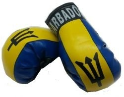 Barbados Country Flag Mini Boxing Gloves to Hang Over Your Automobile Mirror ... New