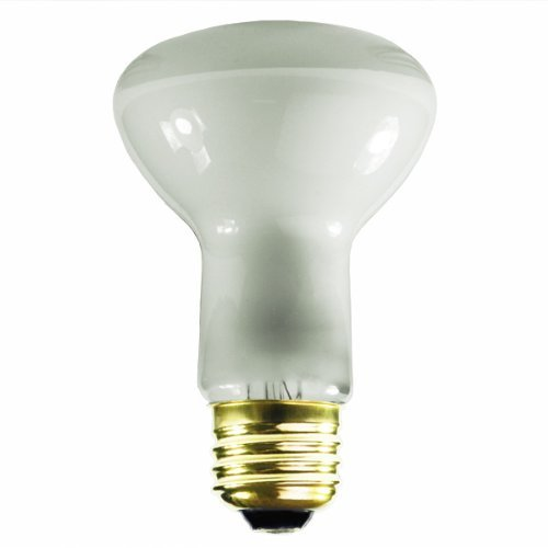 Satco S3849 130-Volt 45-Watt R20 Medium Base Light Bulb, Frosted