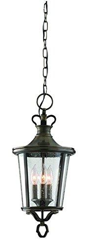 Troy Three Light Hanging Lantern Lighting F1386EB Three Light Hanging Lantern