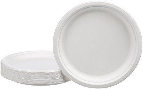 AmazonBasics 10-Inch Compostable Plates, 500-Count by AmazonBasics (Image #2)