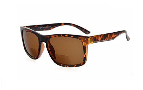 Herina Bifocal Eyekepper Bifocal Sunglasses (+250, Brown - Sunglasses Kpop