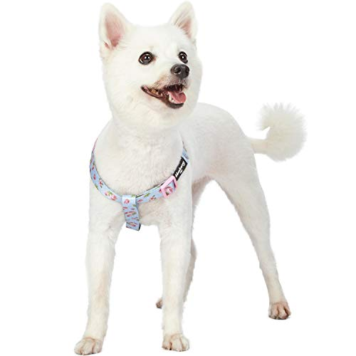 Blueberry Pet Step-in Spring Scent Inspired Rose Blossom Floral Print Pastel Blue Dog Harness, Chest Girth 16.5 - 21.5, Small, Adjustable Harnesses for Dogs