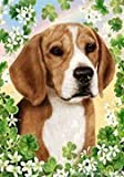 "Beagle by Tamara Burnett St. Patricks Day House Flag 28"" x 40"" Review"