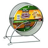 Wild Harvest 7 inch Metal Pet Activity Wheel For guinea pigs, hamsters, gerbils and other small animals ()