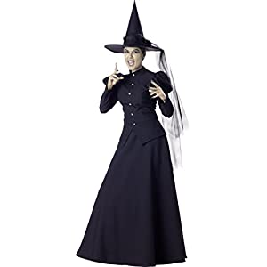 InCharacter Wretched Witch Adult Costume