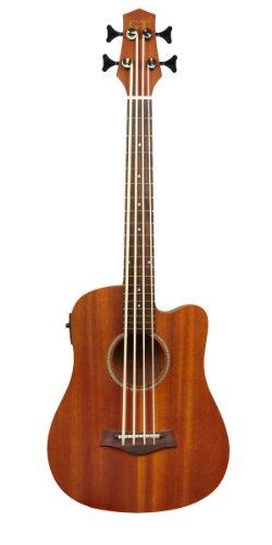 Gold Tone Micro M-Bass