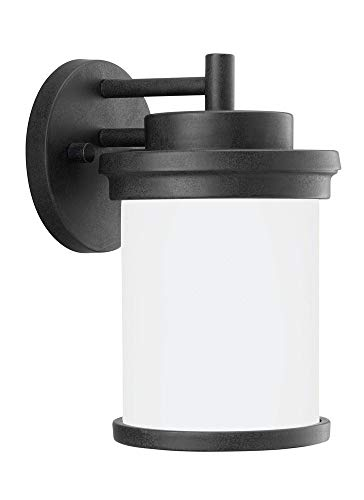 (Sea Gull Lighting 88660EN3-185 One Light Outdoor Wall Lantern Forged Iron)