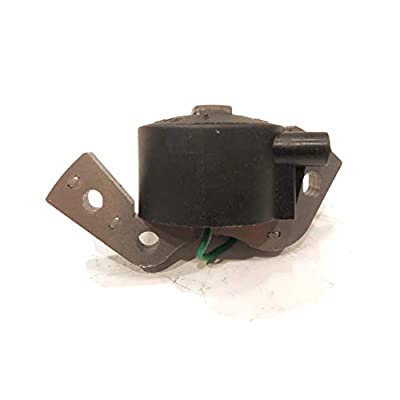 The ROP Shop | Ignition Coil for 1972 Johnson Evinrude 25HP, 25R72R, 25RL72R, and 1962, 28202, 28203: Sports & Outdoors