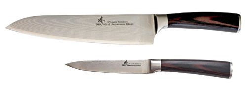 ZHEN Japanese Damascus VG-10 Steel 2 Piece Boxed Classic Starter 8'' Gyuto Chef's and Utility Knife Set, Pakkawood, Silver by ZHEN