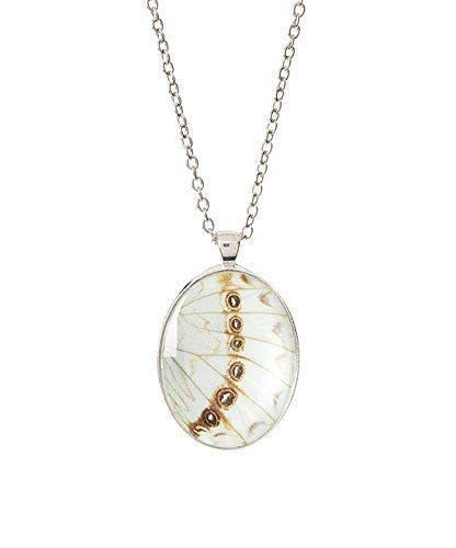 Real Butterfly Wing Necklace - White Morpho Luna butterfly under Magnified Glass - Insect Jewelry ()
