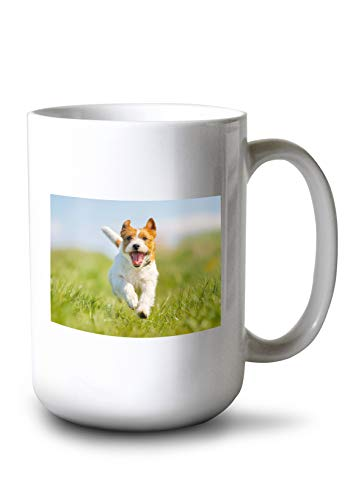 Jumping Jack Collectible - Lantern Press Jumping Jack Russell Terrier Photography A-90746 (15oz White Ceramic Mug)