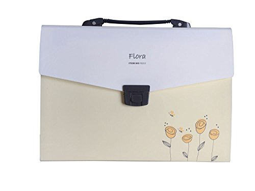 SHUTER Accordion Expanding File Folder with 13-Pockets,A4 and Letter Size (Yellow)