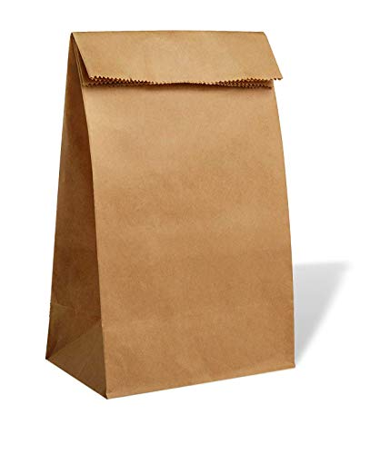 30 pc Kraft Paper Lunch Bags