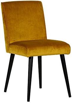 Exclusiver Polsterstuhl Stuhl Esszimmer Sessel Velvet Sara