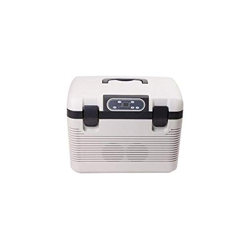 - CTO- 19L Mini Small Household Refrigerator Car Refrigerator Car Home Dual-Use Portable Incubator Dialysate,A,19L