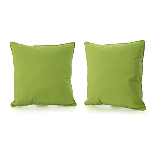 Corona Outdoor Square Water Resistant Pillow (2, Green) by GDF Studio