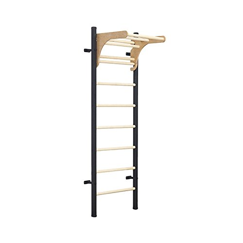 BenchK Wall Bar Ladder Fusion