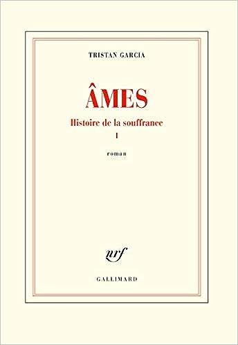 Amazon Fr Histoire De La Souffrance I Ames Tristan