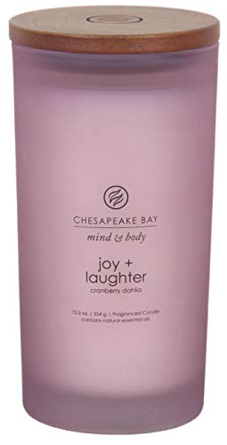 Chesapeake Bay Candle Mind & Body Large Scented Candle, Joy + Laughter (Cranberry Dahila)