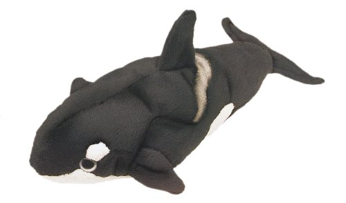 orca plush for 1 year old buyer's guide