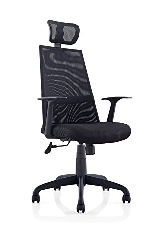 Ergomax Meshed Ergo Office Chair with Headrest (Black)