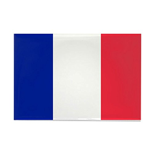 French Flag Rectangle Magnet by CafePress -