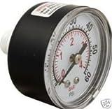 Pentair 33600-0023T 0-60 Psi Backmount Pressure Gauge