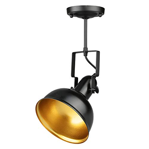 Track Mounted Pendant Lights in US - 6