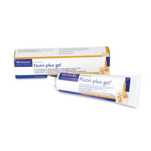 Nutri-Plus Gel 240g (two tubes)