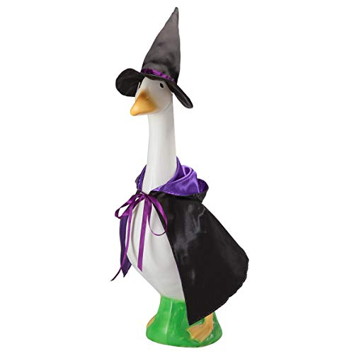 Miles Kimball Witch Goose Outfit by Miles Kimball