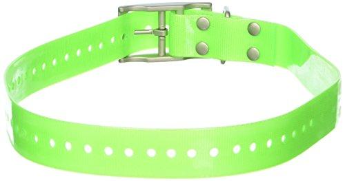 Garmin 1-Inch Dog Collar, Green